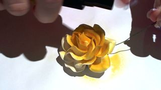 Starburst sprayed flower 4