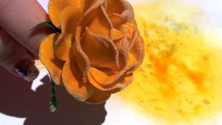 Starburst sprayed flower 9