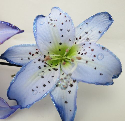 Lindy's Lilies blue 1